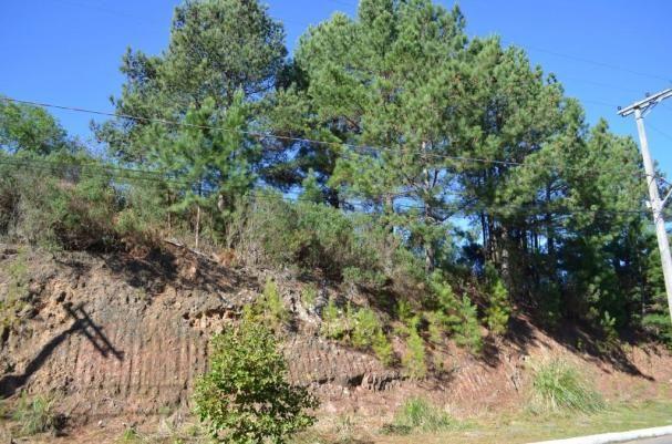 Terreno à venda, 831 m² por r$ 290.000,00 - mato queimado - gramado/rs - Foto 4