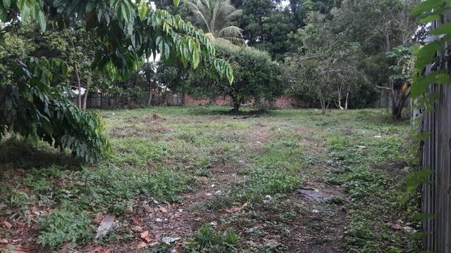 Area Verde Terreno