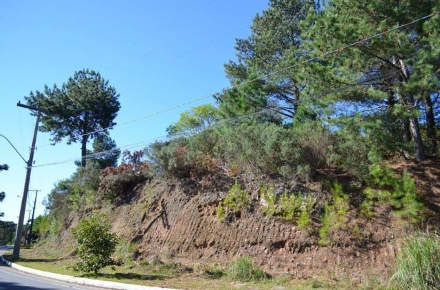 Terreno à venda, 831 m² por r$ 290.000,00 - mato queimado - gramado/rs - Foto 2