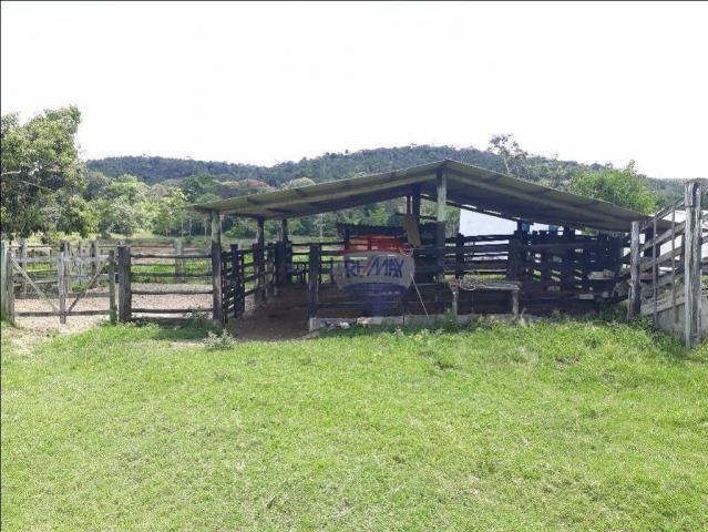 Fazenda à venda em Porto Seguro (Vera Cruz), Bahia - Foto 13