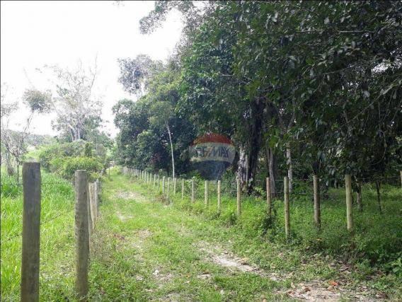 Fazenda à venda em Porto Seguro (Vera Cruz), Bahia - Foto 6