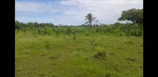 Vendo ou Troco Terreno na zona rural de Santa Inês - MA / Área 10.000m² - Foto 3