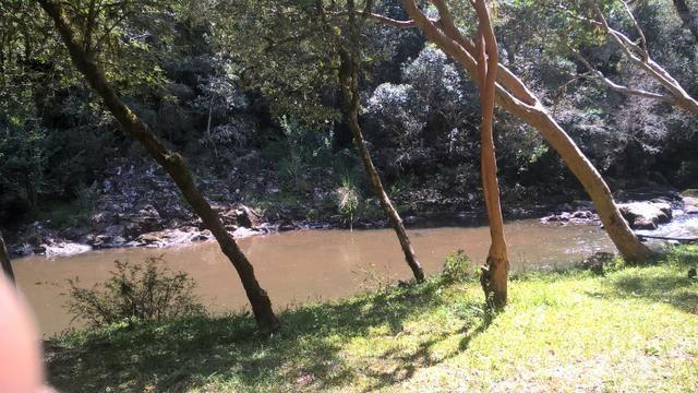 Chácara São Gotardo de Ana Rech 2500m Rio São Marcos 1/4ha - Foto 9