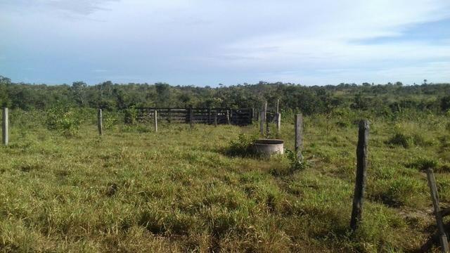 Vendo Sitio / Chácara 72 hectares, Pecuária ou lavoura, Casa, energia, Agua, Nobres - Foto 8