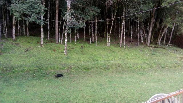 Chácara Campo Magro Área de 21.477m² - Com Benfeitorias - Foto 10