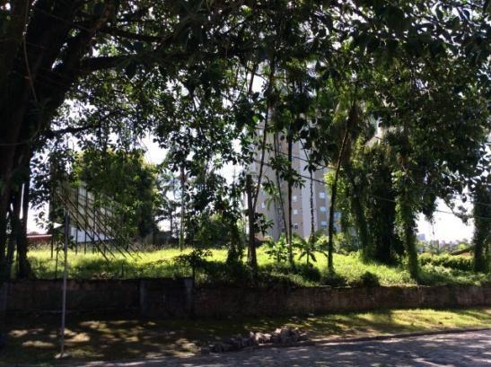 Terreno para alugar em Anita garibaldi, Joinville cod:04301.004 - Foto 3