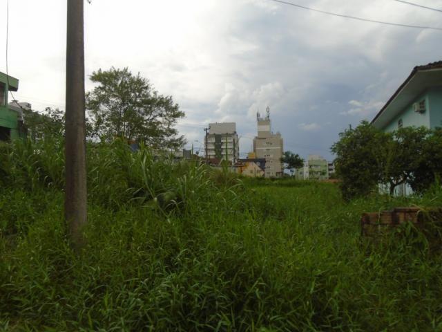 Terreno para alugar em Santo antonio, Joinville cod:07792.003 - Foto 5