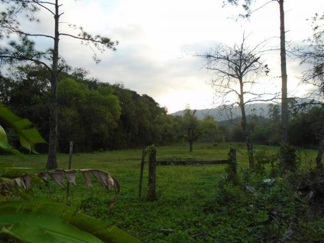 Terreno para alugar em Zona industrial norte, Joinville cod:06691.006 - Foto 4