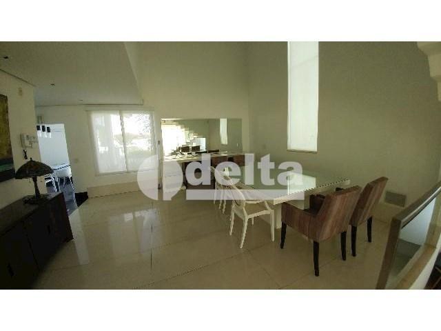 Casa para alugar com 0 dormitórios em Patrimônio, Uberlândia cod:559204 - Foto 14