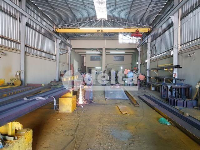 Galpão/depósito/armazém para alugar em Daniel fonseca, Uberlândia cod:571406 - Foto 9