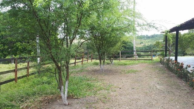 Sítio com 11.67 hectares em Igarassu/PE - Foto 2