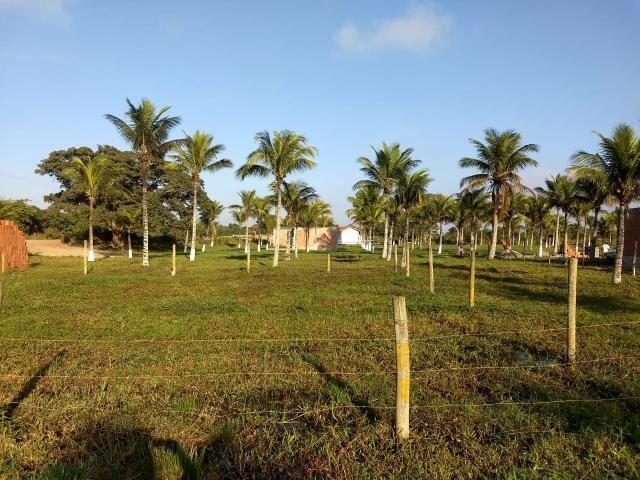 Gs cod 138 Terrenos em Promoção por Tempo Limitado!!! - Foto 3