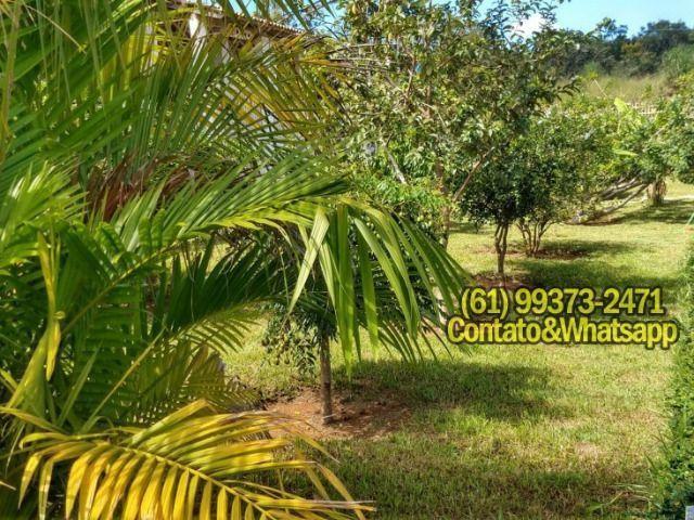 Casa no Lago Corumbá IV Condomínio Palmeiras - Foto 16