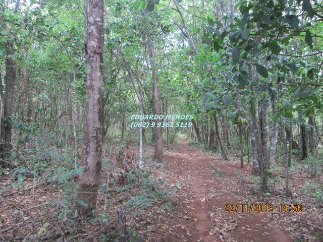 Oportunidade de adquirir sua Chácara de lazer c/ água a 1 km de Gameleira de GO - Foto 6