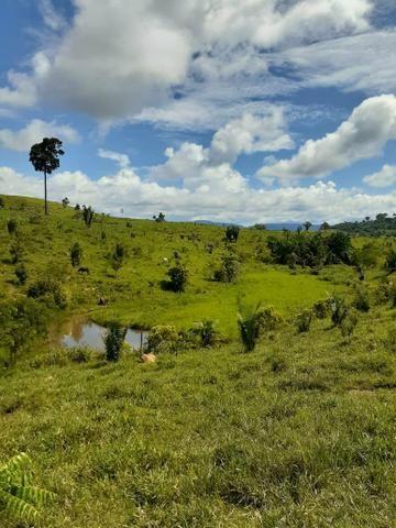 Venda fazenda 20 alqueires localizada 5 km da vila Paulo fonteles - Foto 6