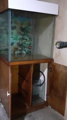 Vendo aquário completo com bomba e filtro - Foto 3