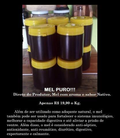 Mel Puro - Foto 2