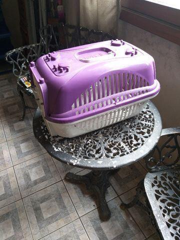 Caixas para transporte de gatos - Foto 4