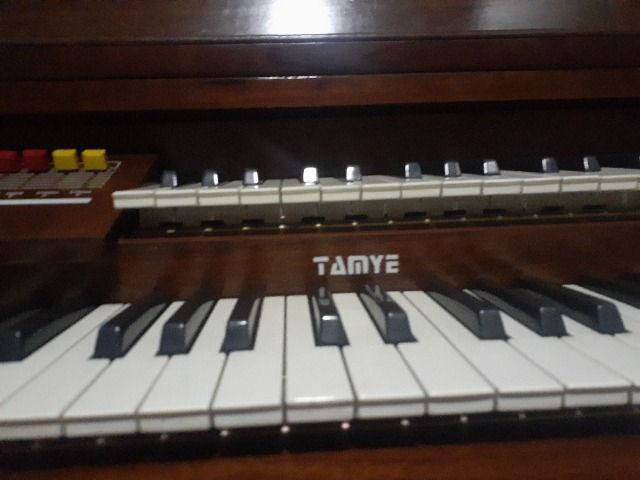 Órgão Eletrônico Tamye - Foto 5
