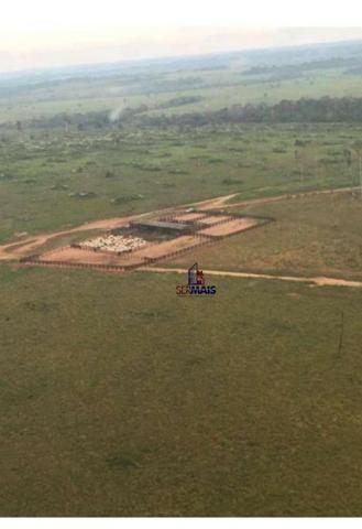 Belíssima fazenda a venda na divisa de Rondônia com o estado de mato grosso - Foto 12