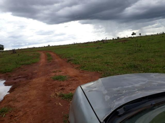 Fazenda Top 69 Alqueires 45km de jatai