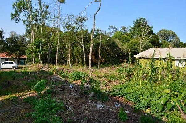 Terreno residencial à venda, vale dos pinheiros, gramado. - Foto 7