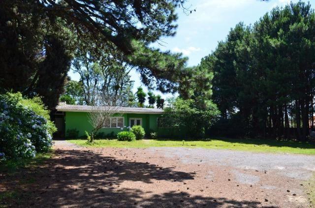 Terreno à venda, 3945 m² por R$ 3.500.000,00 - Centro - Canela/RS - Foto 9