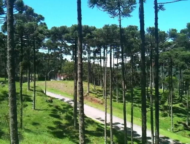 Terreno à venda, 800 m² por r$ 478.800,00 - condomínio aspen mountain - gramado/rs - Foto 5