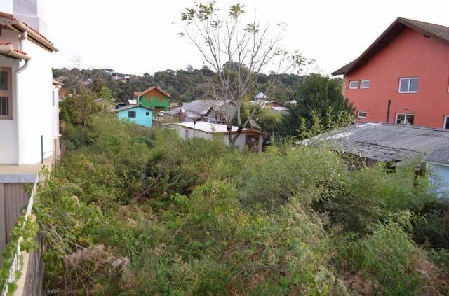 Terreno residencial à venda, são josé, canela. - Foto 5
