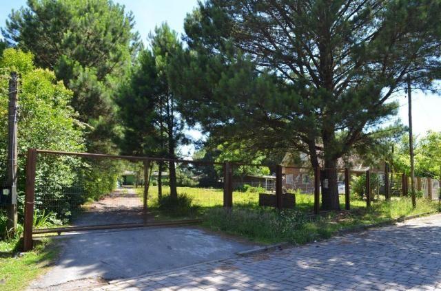 Terreno à venda, 3945 m² por R$ 3.500.000,00 - Centro - Canela/RS - Foto 4