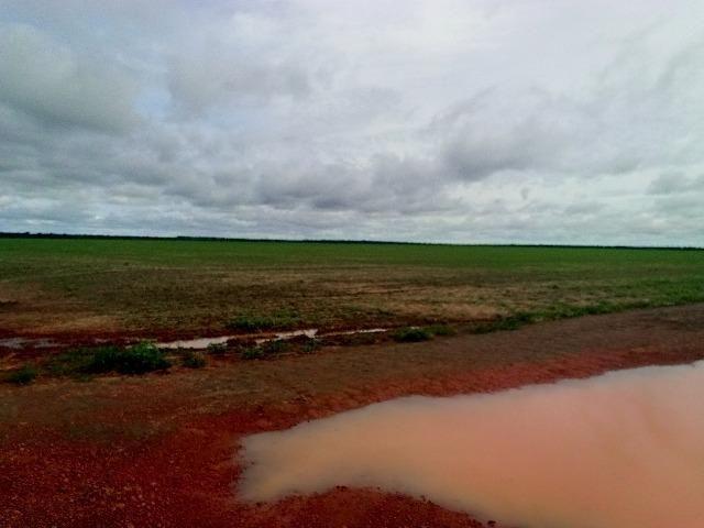 Fazenda de lavoura em Itanhanga-mt