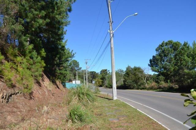 Terreno à venda, 831 m² por r$ 290.000,00 - mato queimado - gramado/rs - Foto 7
