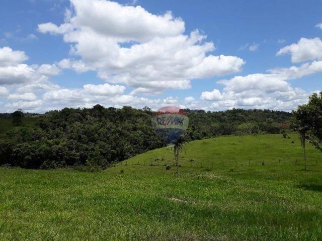 Fazenda à venda em Porto Seguro (Vera Cruz), Bahia - Foto 16