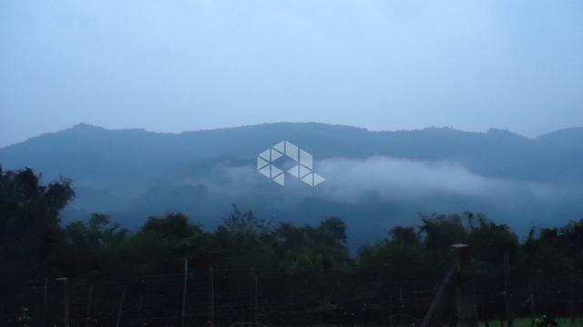 Chácara à venda em Faria lemos, Bento gonçalves cod:9908778 - Foto 10