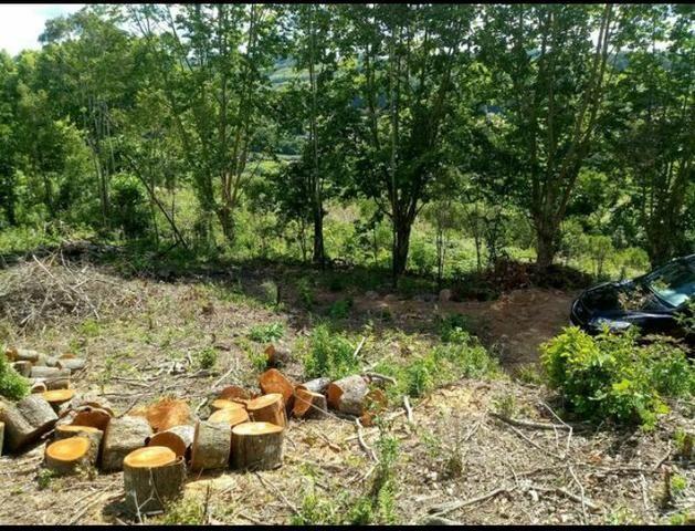 Terreno no Vale dos Vinhedos - Foto 4