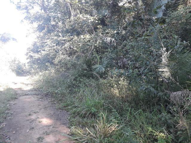 Fazenda de 785 hectares em Rosário Oeste MT - Foto 14