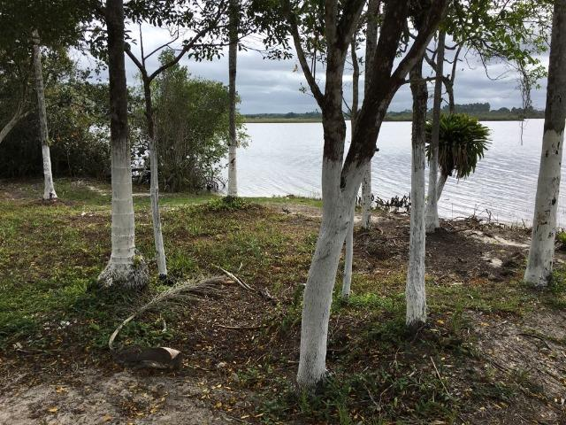 Terreno Praia do Ervino - R$ 35.000,00 - Foto 11