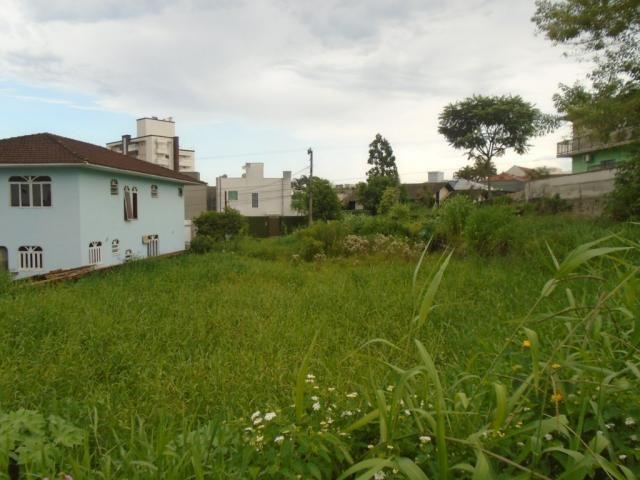 Terreno para alugar em Santo antonio, Joinville cod:07792.002 - Foto 2
