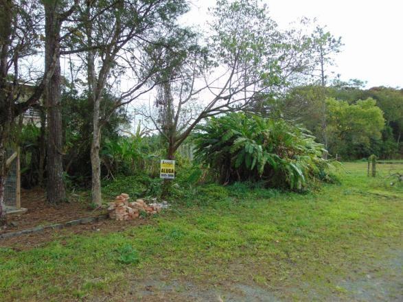 Terreno para alugar em Zona industrial norte, Joinville cod:06691.007