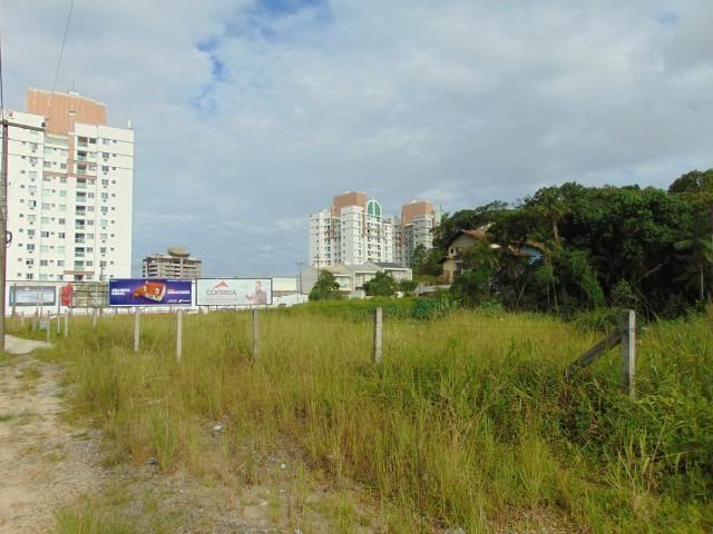 Terreno para alugar em Atiradores, Joinville cod:30040.012 - Foto 7
