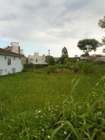 Terreno para alugar em Santo antonio, Joinville cod:07792.002 - Foto 3