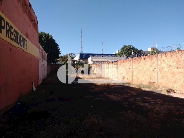 Terreno para alugar com 0 dormitórios em Umuarama, Uberlândia cod:567245 - Foto 4