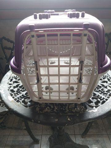 Caixas para transporte de gatos