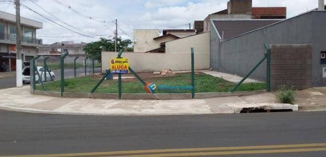 Terreno para alugar, 325 m² por R$ 700,00/mês - Jardim Novo Cambui - Hortolândia/SP - Foto 4