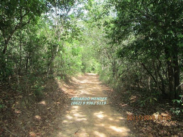 Oportunidade de adquirir sua Chácara de lazer c/ água a 1 km de Gameleira de GO - Foto 5