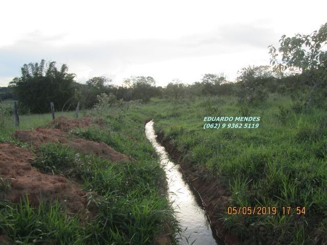 Oportunidade de adquirir sua Chácara de lazer c/ água a 1 km de Gameleira de GO - Foto 16