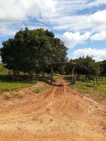 Venda fazenda 20 alqueires localizada 5 km da vila Paulo fonteles - Foto 5