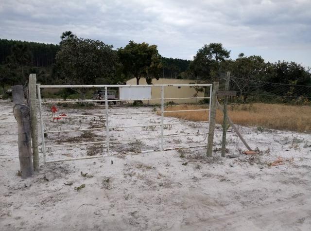 Sitio no Formoso - Buritizeiro MG - Foto 7