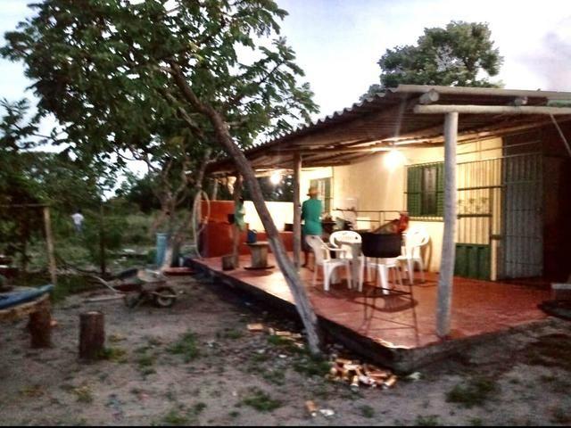 Sitio no Formoso - Buritizeiro MG - Foto 3