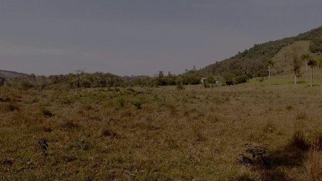 Sítio em Santo Antônio da Patrulha 10 Hectares. Peça o Vídeo Aéreo - Foto 11